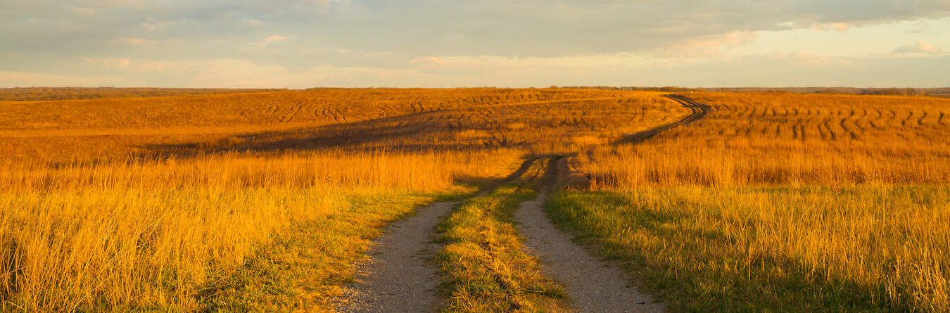 Gravel pathway on the prairie